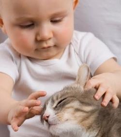 Дети и животные в наших семьях