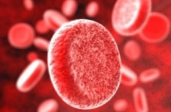 Роль железа в производстве красных кровяных клеток