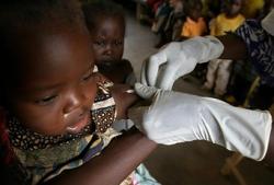 Ставудин и туберкулез у носителей ВИЧ